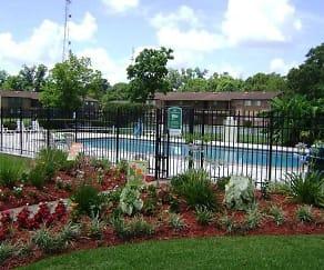 Pool, Pinewoods