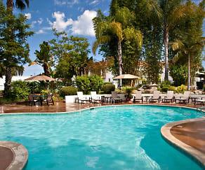 Pool, Casa La Mesa