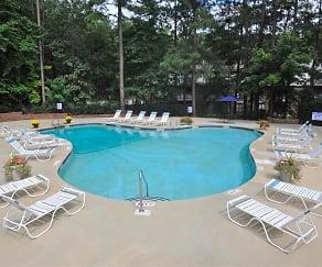 Pool, Brook Pines