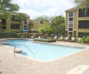 Pool, Hidden Palms