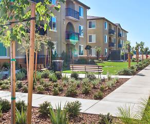 Building, Campus Oaks Apartments
