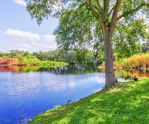 Lake, Serenity Lake