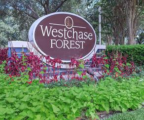 Community Signage, Westchase Forest