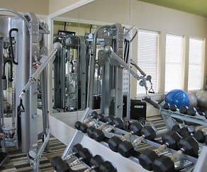 Fitness Weight Room, The Wyatt at Presidio Junction