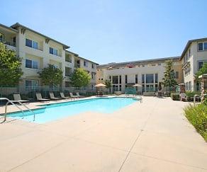 Pool, Royal Oaks Apartments