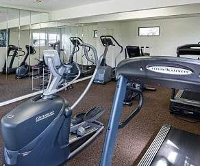 Fitness Weight Room, Spring Meadows
