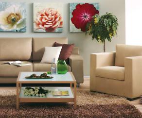 Living Room, Panorama