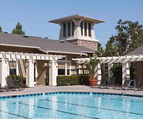 Pool, Arcadia At Stonecrest Village