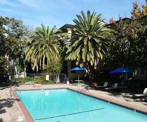 Pool, Mission Heights