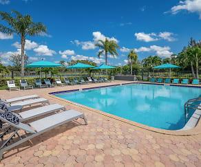 Pool, Verse at Royal Palm Beach