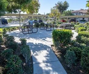 Recreation Area, Rancho Bonita