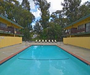 Pool, The Cedars