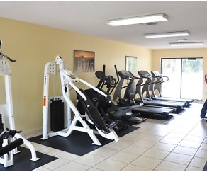 Fitness Weight Room, Westland 49 Apartments