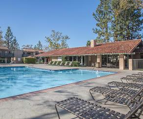 Pool, McComber Creek Apartment Homes