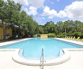 Pool, Waters Edge