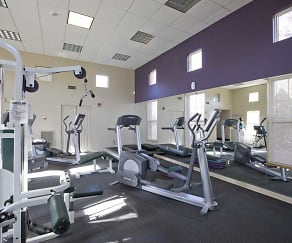 Fitness Weight Room, Southwood Square