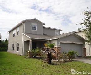 18320 Snowdonia Dr, Jasmine Estates, FL