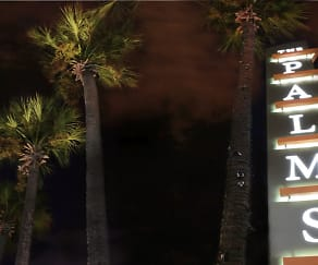 Night / Evening, The Palms On Westheimer