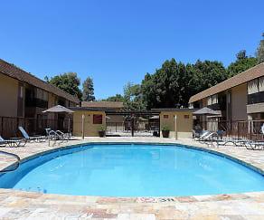 Pool, Oasis at Scottsdale