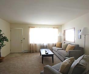 Living Room, Mountain Brook