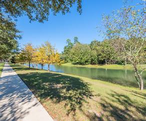 Evergreen Uptown, St Patrick Interparish School, Gainesville, FL