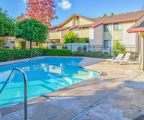 Pool, Muir Park Condos