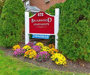 Community Signage, Briarwood Commons