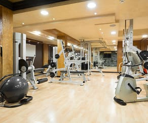 Fitness Weight Room, 7Penn Apartments