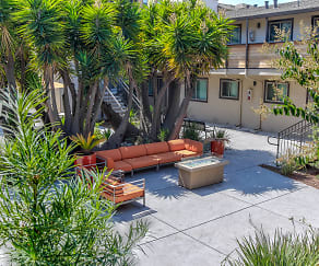 Recreation Area, Velocity at Lawrence Station