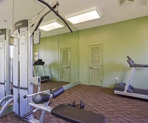 Fitness Weight Room, Willow Trace Apartments