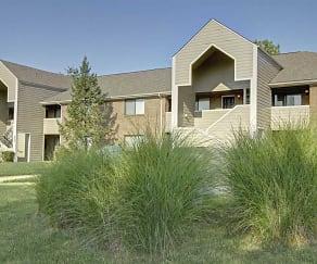 Building, Cedar Springs