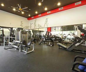 Fitness Weight Room, AMLI Warner Center