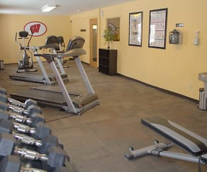 Fitness Weight Room, Springtree Apartments