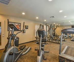 Fitness Weight Room, Desert Shadows