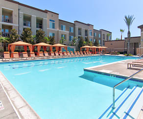 Pool, Circa 2020