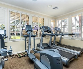 Fitness Weight Room, Mesa Royale a 55+ Community