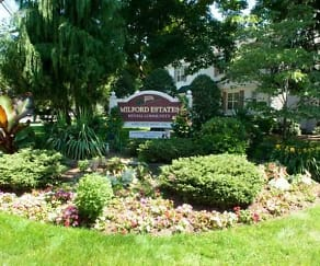 Landscaping, New Milford Estates