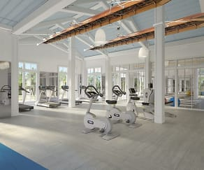 Fitness Weight Room, Town Westshore