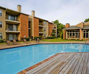 Pool, Woodscape