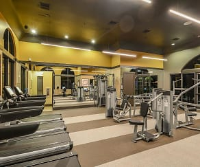 Fitness Weight Room, Palm Ranch