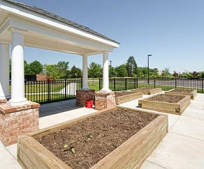 Recreation Area, Mintbrook Senior Community