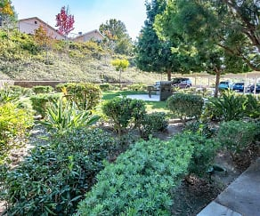 Landscaping, Pacific View Apartments