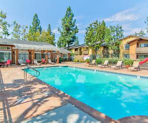 Pool, Citrus Gardens Apartments