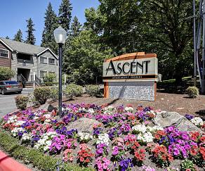 Community Signage, Ascent Apartment Homes