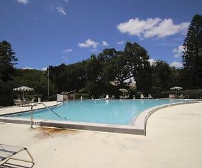 Pool, Carlton Arms Of St. Petersburg