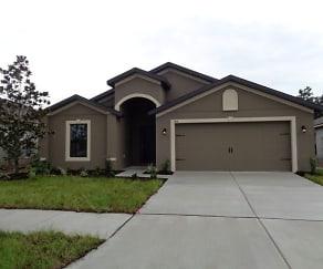 919 Wynnmere Walk Avenue, Ruskin, FL