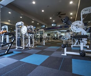 Fitness Weight Room, Bridgewater