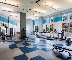 Fitness Weight Room, Modera Fairfax Ridge