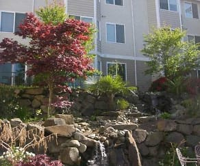 Landscaping, The Oasis Apartments