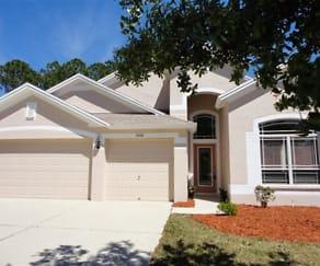 5928 Bramble Bush Court, 33541, FL